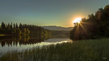 Augustkveld ved Nidelva - Svean - Fotograf Øyvind Blomstereng