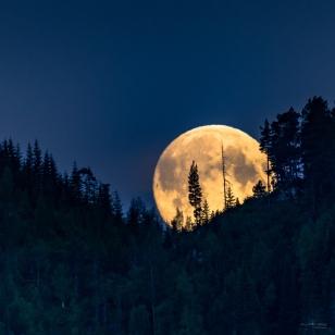 7 Månen - Lav - Fotograf Øyvind Blomstereng-0455